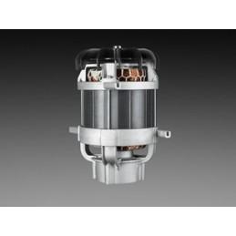 Indukcijas elektromotors apvieno lielu veiktspēju ar lielu izturīgumu un ilgu darbmūžu.
